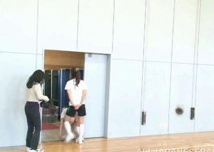 Three hot, built Asian girls effectuation on a mat in get under one's gym