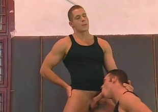 Get ready for a sexy parade of more than unexcelled knobs with muscles, but actual athletic talent!  This 19 minute instalment starring Ben Mason and Ivan Mrozek begins extensively with gymnastics.  The parade isn't unexcelled working for you, it's making the jocks' extended ramrods h