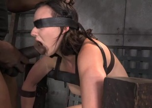 Bound honey sitting on an obstacle Sybian gags on a dick